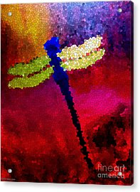 Blue Dragonfly No 3 Acrylic Print by Anita Lewis