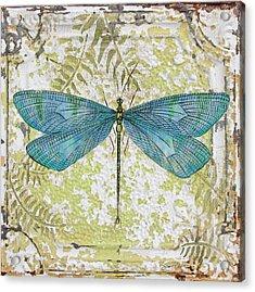 Blue Dragonfly On Vintage Tin Acrylic Print