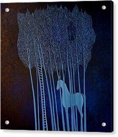Blue Dreams Acrylic Print by Tone Aanderaa