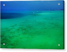 Blue Emerald. Peaceful Lagoon In Indian Ocean  Acrylic Print by Jenny Rainbow