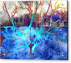 Blue Explosion Acrylic Print by Susanne Baumann