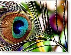 Acrylic Print featuring the photograph Blue Eye by Steve Godleski