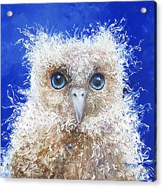 Blue Eyed Owl Painting Acrylic Print by Jan Matson