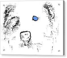 Blue Eyed Pup Acrylic Print