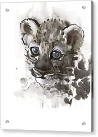 Blue Eyes Acrylic Print by Mark Adlington