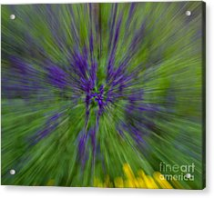 Acrylic Print featuring the photograph Blue Floral Blur by Dale Nelson