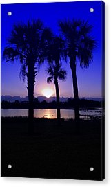 Acrylic Print featuring the photograph Blue Florida Sunrise by Susan D Moody
