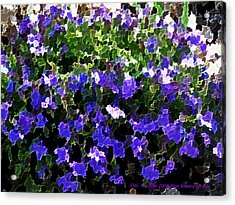 Blue Flowers On Sun Acrylic Print by Dr Loifer Vladimir