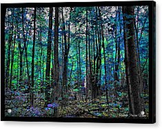 Acrylic Print featuring the photograph Blue Forrest by Michaela Preston
