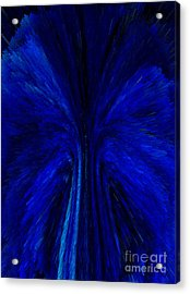 Blue Fuzz Acrylic Print by Patricia Kay