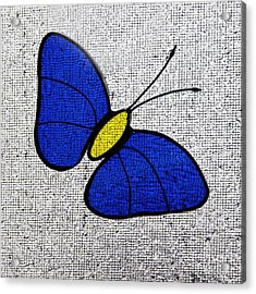 Blue Glass Butterfly Square Acrylic Print by Karen Adams
