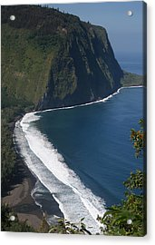 Blue Hawaii Acrylic Print by Kathleen Scanlan