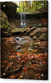 Blue Hen Falls In Autumn Acrylic Print