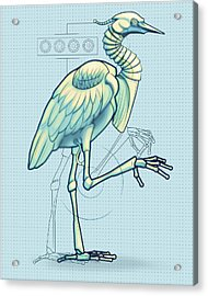 Blue Heron 3000 Acrylic Print by Vanessa Bates