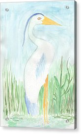 Blue Heron In The Tules Acrylic Print by Helen Holden-Gladsky