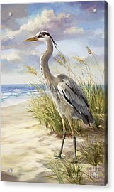 Blue Heron  Acrylic Print by Laurie Hein