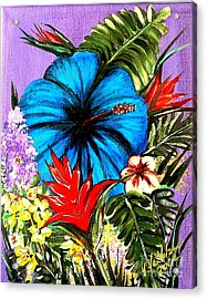 Blue Hibiscus Acrylic Print by Valarie Pacheco