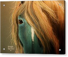 Blue Horse Acrylic Print by Heather Gessell