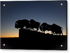 Blue Hour At Caprock Canyons State Park Acrylic Print