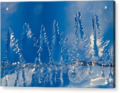 Blue Ice Forest At The Edge Of A Blue Ice Lake Acrylic Print