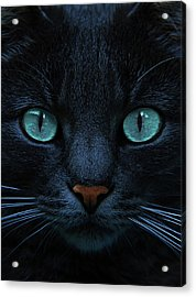 Blue Is The Night Acrylic Print by Joachim G Pinkawa