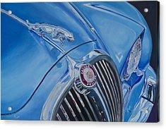 Vintage Blue Jag Acrylic Print