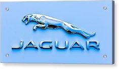 Blue Jaguar Acrylic Print by Ronda Broatch
