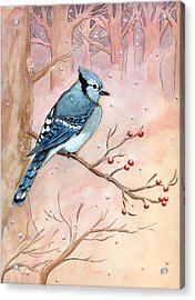 Acrylic Print featuring the painting Blue Jay by Katherine Miller
