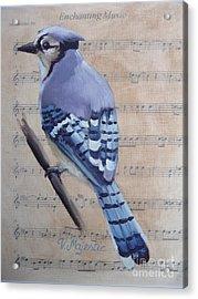 Blue Jay On Vintage Sheet Music Acrylic Print