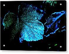 Blue Leaf Acrylic Print by Randi Grace Nilsberg