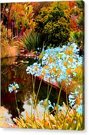 Blue Lily Water Garden Acrylic Print by Amy Vangsgard