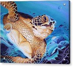 Blue Loggerhead Acrylic Print