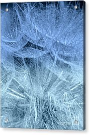 Acrylic Print featuring the photograph Blue Mist by France Laliberte