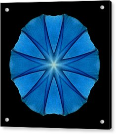 Acrylic Print featuring the photograph Blue Morning Glory Flower Mandala by David J Bookbinder