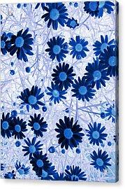 Acrylic Print featuring the digital art Blue Mystical Daisies  by Sandra Foster
