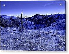 Blue Night Acrylic Print by Mickey Harkins