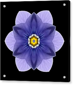 Acrylic Print featuring the photograph Blue Pansy I Flower Mandala by David J Bookbinder