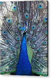 Blue Pearl Of Nature Acrylic Print