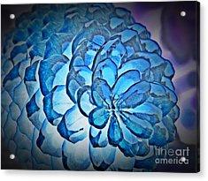 Blue Pine Cone 2 Acrylic Print
