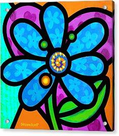 Blue Pinwheel Daisy Acrylic Print