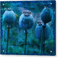 Acrylic Print featuring the photograph Blue Poppy Grunge by Sandra Foster