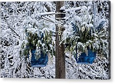 Blue Pots After Ice And Snow Storms Acrylic Print