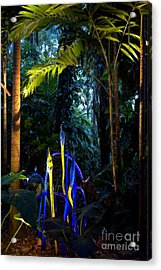 Blue Rainforest Acrylic Print