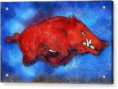 Blue Razorback Acrylic Print by Dawn Bearden