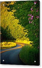 Acrylic Print featuring the photograph Blue Ridge Afternoon by John Haldane