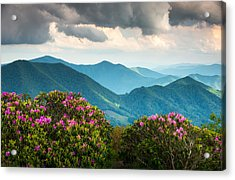 Blue Ridge Appalachian Mountain Peaks And Spring Rhododendron Flowers Acrylic Print
