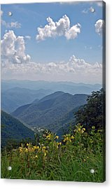 Blue Ridge Blossoms Acrylic Print by Mary Anne Baker