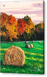 Blue Ridge - Fall Colors Autumn Colorful Trees And Hay Bales II Acrylic Print by Dan Carmichael