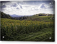 Blue Ridge View Acrylic Print