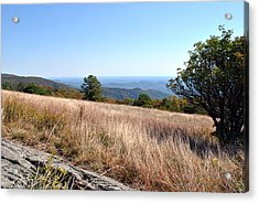 Acrylic Print featuring the photograph Blue Ridge View by Kelly Nowak